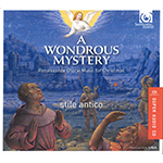 A Wondrous Mystery CD