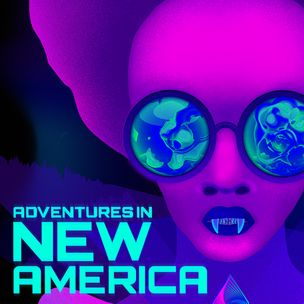 c07c6760c56 Adventures in New America